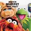 Muppetgirl