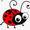 Ladybird29