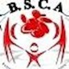 BSCA2015